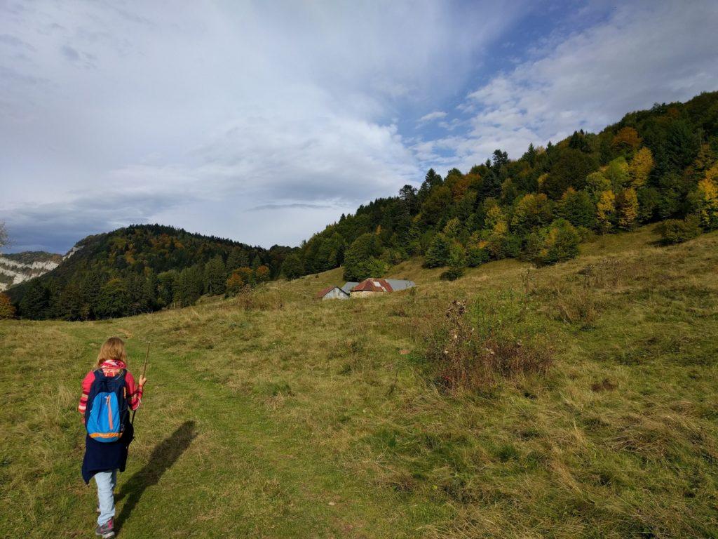 Le plateau du Revard : alpages propices à la randonnée, ski de fond l'hiver, VTT l'été. La nature authentique à 20 mn de nos logements.